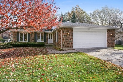 Downers Grove Single Family Home For Sale: 6951 Plymouth Road