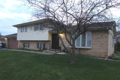 Alsip  Single Family Home For Sale: 11314 South Lamon Avenue