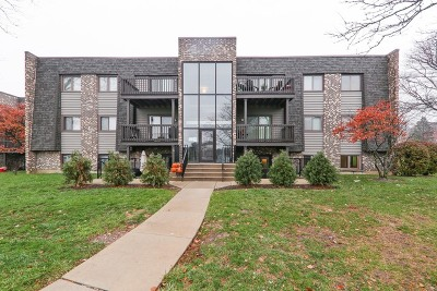 Wheaton Condo/Townhouse Contingent: 1464 Stonebridge Circle #E4