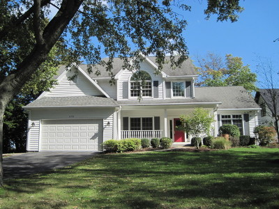 Glen Ellyn Single Family Home For Sale: 975 Highland Avenue