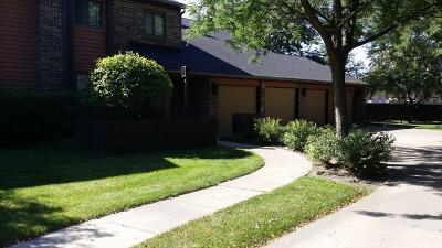 Elgin Single Family Home New: 655 Waverly Drive