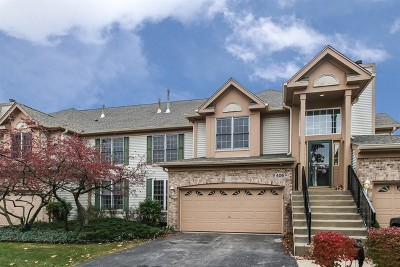 Naperville Condo/Townhouse New: 406 Harlowe Lane #406