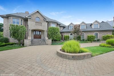 Burr Ridge Single Family Home New: 8744 Johnston Road