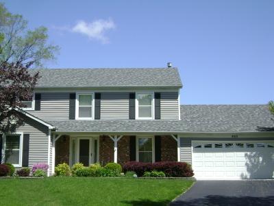 Schaumburg Single Family Home For Sale: 405 Creighton Lane