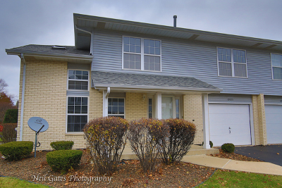 Tinley Park Condo/Townhouse Contingent: 17025 East Circle Drive