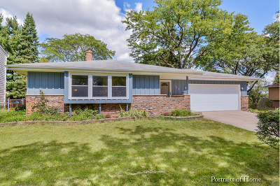 Naperville Single Family Home For Sale: 133 Waxwing Avenue