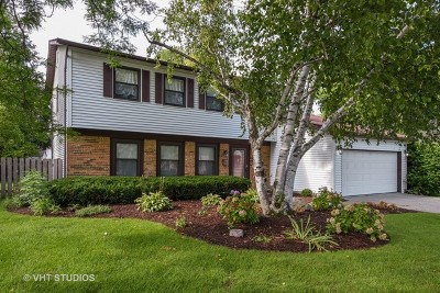 Palatine Single Family Home For Sale: 163 East Cedarwood Court