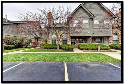 Naperville Condo/Townhouse New: 39 Foxcroft Road #123