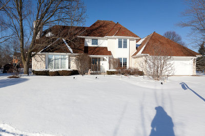 Naperville Single Family Home For Sale: 3968 Paradise Canyon Court
