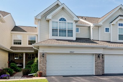 Naperville Condo/Townhouse New: 3947 Garnette Court