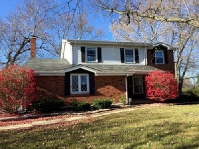 Olympia Fields Single Family Home For Sale: 20440 Ithaca Road