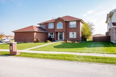 Richton Park Single Family Home For Sale: 22855 Greenfield Boulevard