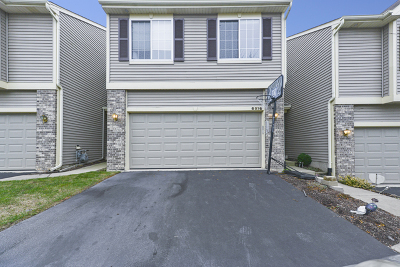 Fox Lake Condo/Townhouse New: 6976 Brightwater Drive #6976