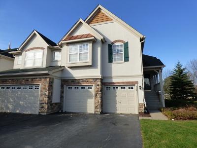 Vernon Hills Condo/Townhouse New: 352 Bay Tree Circle