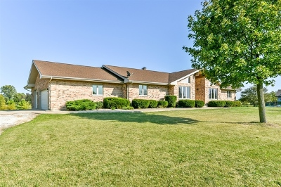 Mokena, Frankfort, New Lenox Rental For Rent: 2050 South Spencer Road