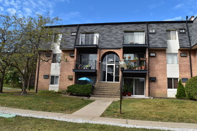 Palatine Condo/Townhouse New: 9a East Dundee Quarter Drive #308