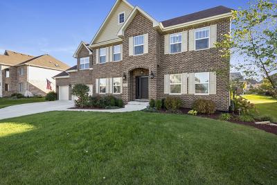Lemont Single Family Home New: 13098 Lismore Lane