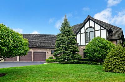 Burr Ridge Single Family Home New: 601 Kenmare Drive