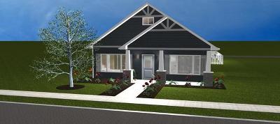 Plainfield Single Family Home New: 12506 Shenandoah Trail