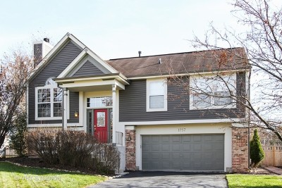 Crystal Lake Single Family Home New: 1757 Somerfield Lane