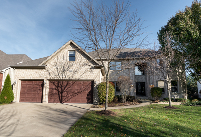 Naperville Single Family Home New: 3440 Redwing Drive