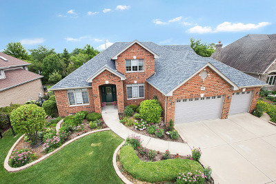 Orland Park Single Family Home New: 13727 Tallgrass Trail