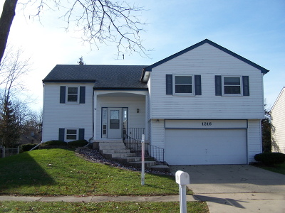 Bartlett IL Single Family Home New: $239,900