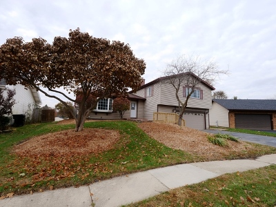 Bartlett IL Single Family Home New: $259,900
