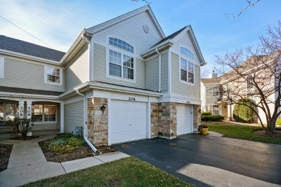 Carol Stream Condo/Townhouse New: 206 Lenox Court #206
