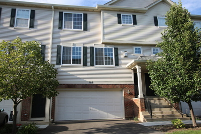 Gilberts Condo/Townhouse New: 286 Timber Trails Boulevard