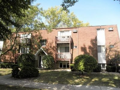 Joliet, Shorewood Rental For Rent: 218 Madison Street #3B