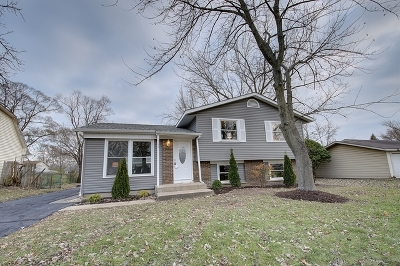 Bolingbrook Single Family Home New: 164 Larchmont Way