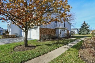 Vernon Hills Condo/Townhouse New: 376 Jefferson Court #376