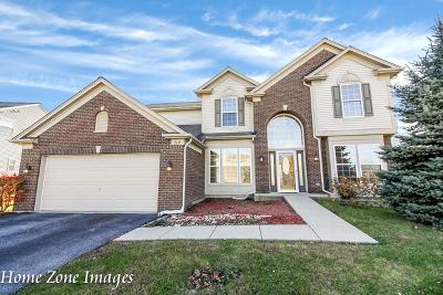 Bolingbrook Single Family Home New: 1639 Boulder Ridge Drive