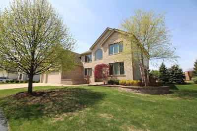 Schaumburg Single Family Home For Sale: 1 Omni Drive