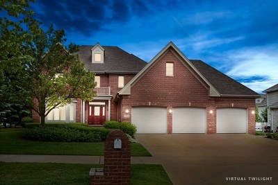 Orland Park Single Family Home New: 17321 Antler Drive