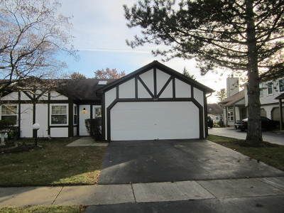 Streamwood Condo/Townhouse New: 249 Juniper Circle
