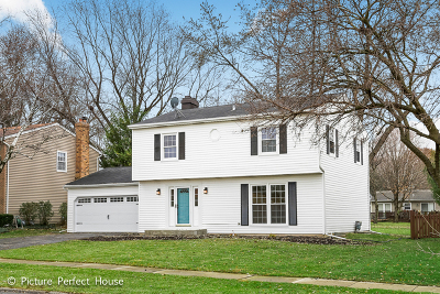 Naperville Single Family Home New: 1625 Warbler Drive