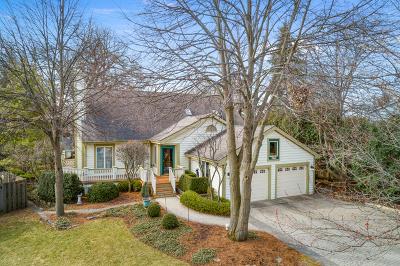 Grayslake Single Family Home For Sale: 371 Allison Court