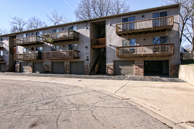 South Elgin Condo/Townhouse Contingent: 320 Woodridge Circle #H