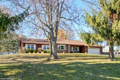 Schaumburg Single Family Home For Sale: 92 Long Avenue