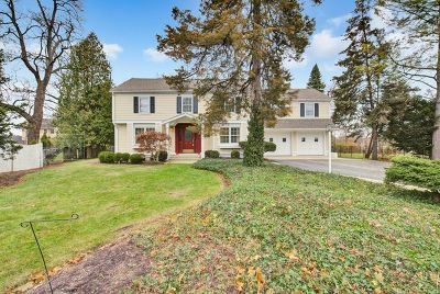 Crystal Lake Single Family Home For Sale: 664 Broadway Avenue