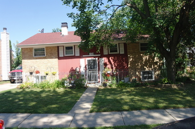 Glendale Heights Single Family Home For Sale: 104 Windsor Lane