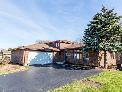 Homer Glen  Single Family Home For Sale: 14401 South Elizabeth Lane