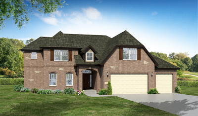 Plainfield Single Family Home For Sale: 13443 Vicarage Drive