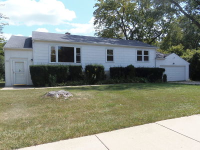 Palatine Single Family Home For Sale: 539 South Plum Grove Road