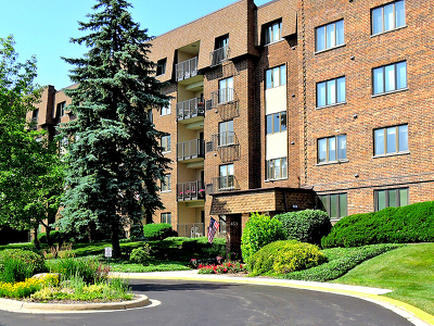 Glen Ellyn Condo/Townhouse Contingent: 453 Raintree Drive #3N