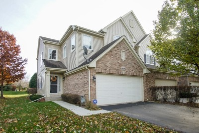 Hoffman Estates Condo/Townhouse For Sale: 6096 Canterbury Lane