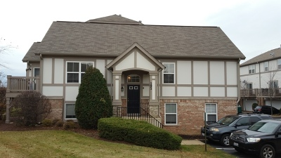 Lake Zurich Condo/Townhouse For Sale: 191 Rosehall Drive