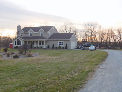 Monee Single Family Home For Sale: 6120 West Pauling Road